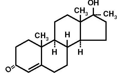 メチルテストステロンの効果