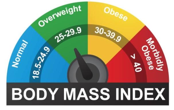 肥満のデメリット