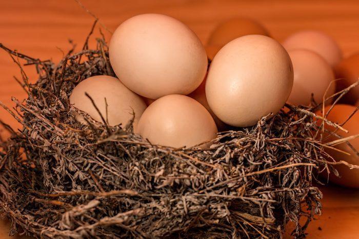 卵で精力アップ